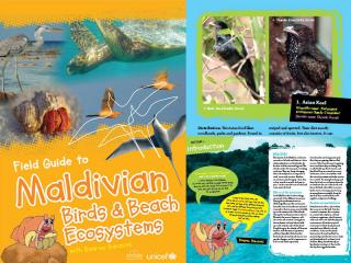 Cover page for the document 'Field Guide to Maldivian Birds and Beach Ecosystems'